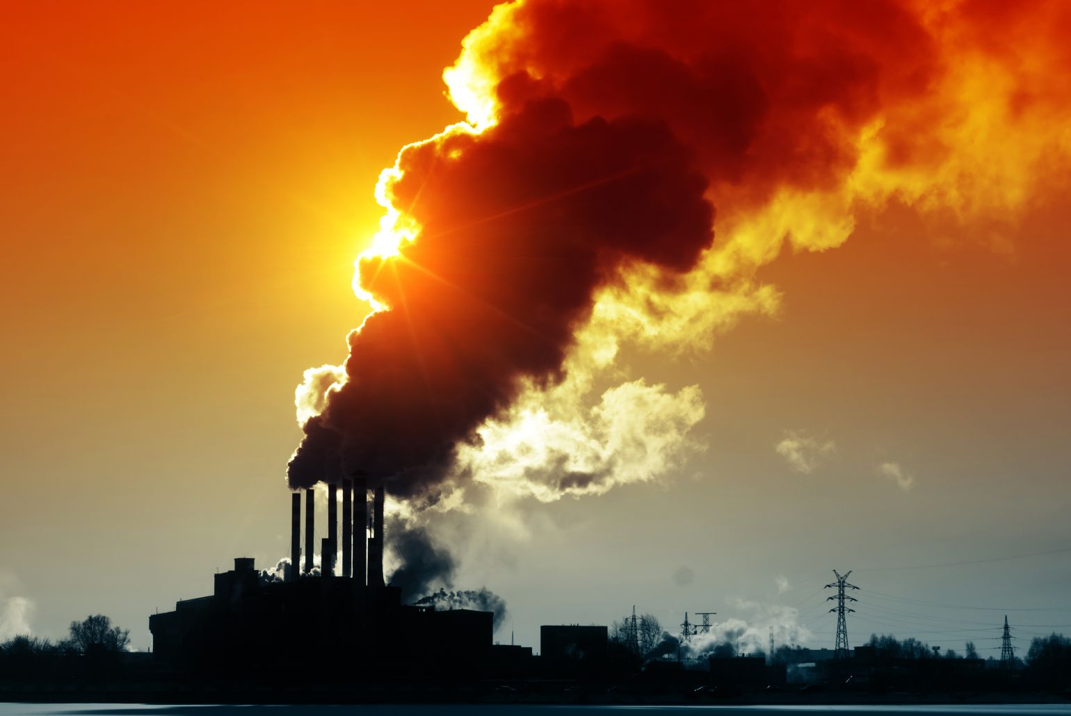 Harmful effects of pollution pictures The