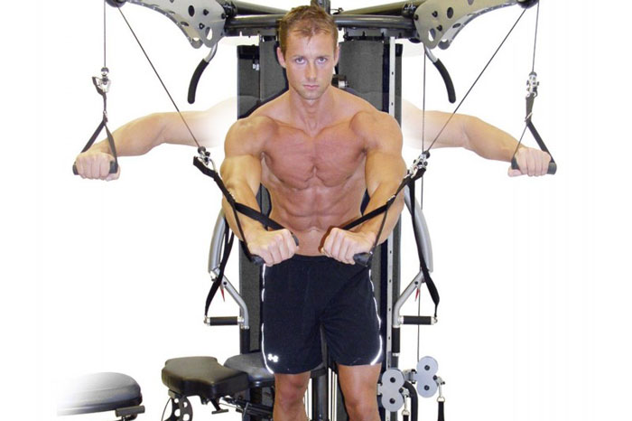 Muscle building: male pectoral muscles