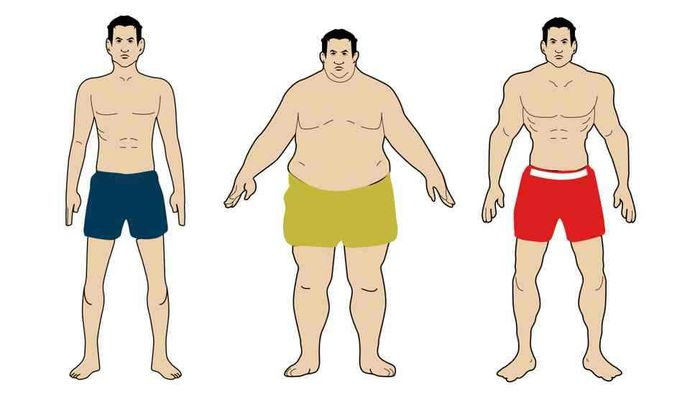 Types of male body: advantages and differences.