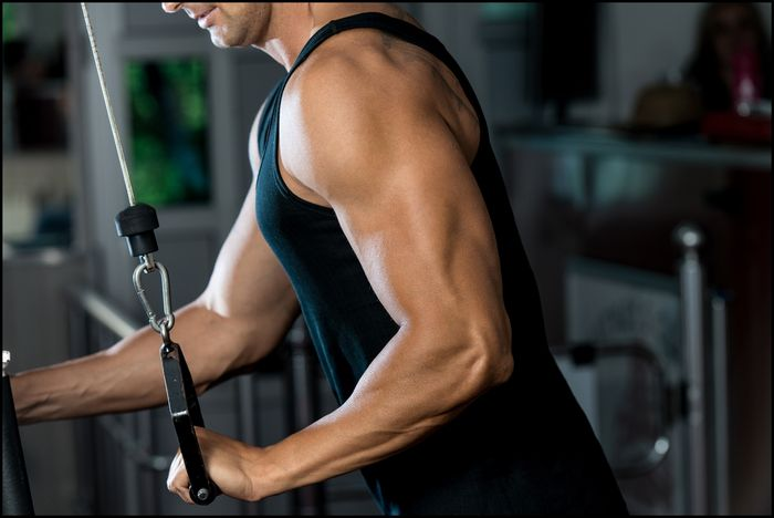 How to inflate the triceps: tips and exercises.
